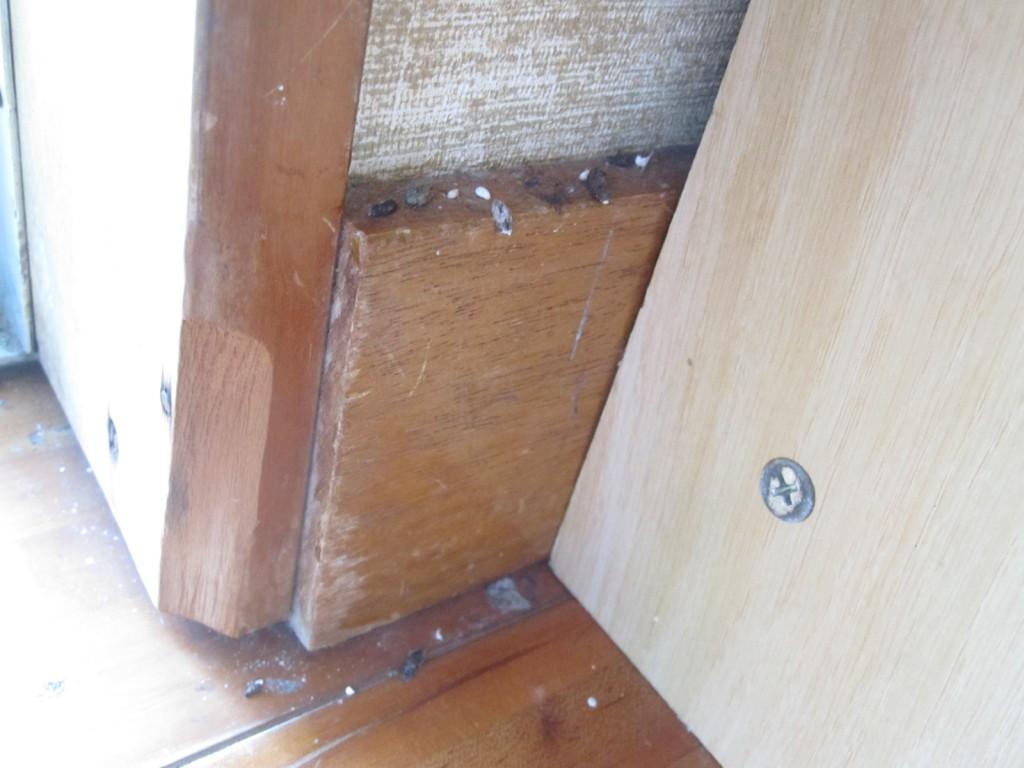 部屋のタンスの裏に大量のヤモリの糞