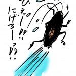ゴキブリの触覚は切れたり折れたりすると再生する?しない?