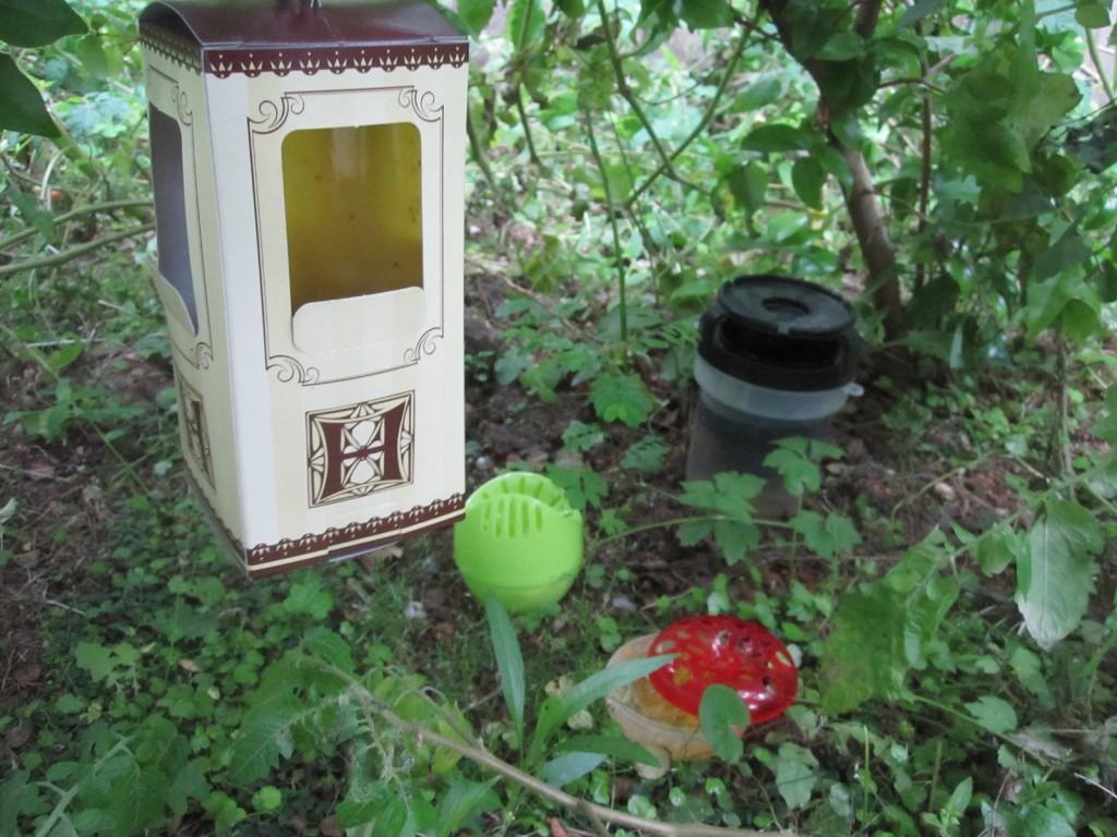 庭に仕掛けた害虫駆除グッズ