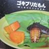 ゴキブリ図鑑の名作・良書を読んで感激した。