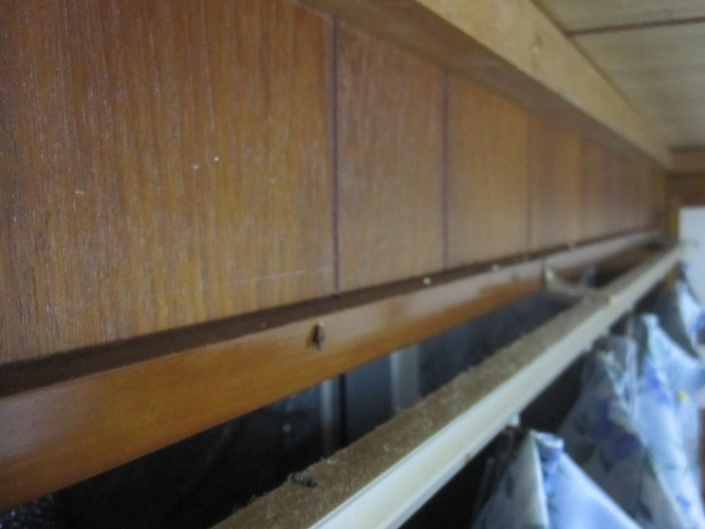 ゴキブリ捕獲器を改良したヤモリホイホイ