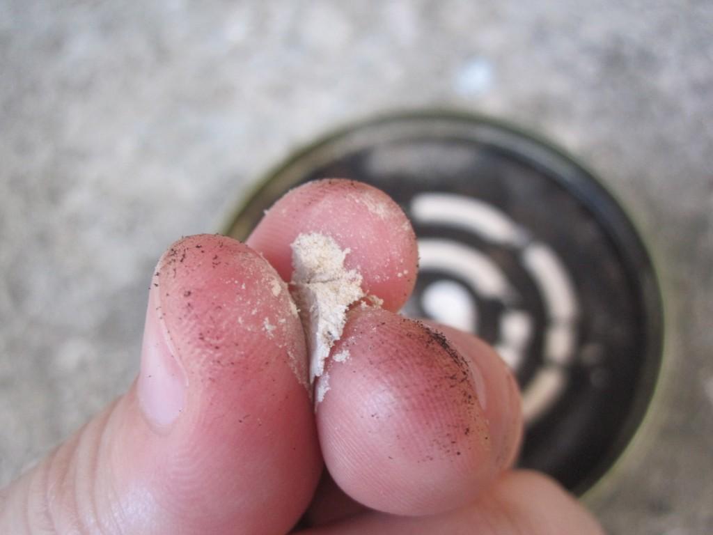 蚊取り線香の燃えカスの灰