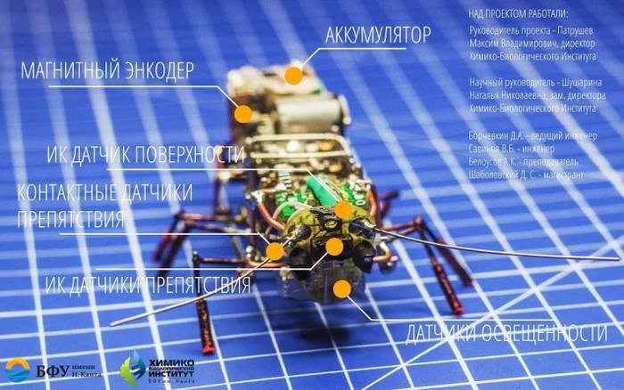 殻・皮を取り外して中身が剥き出しのゴキブリ・ロボット