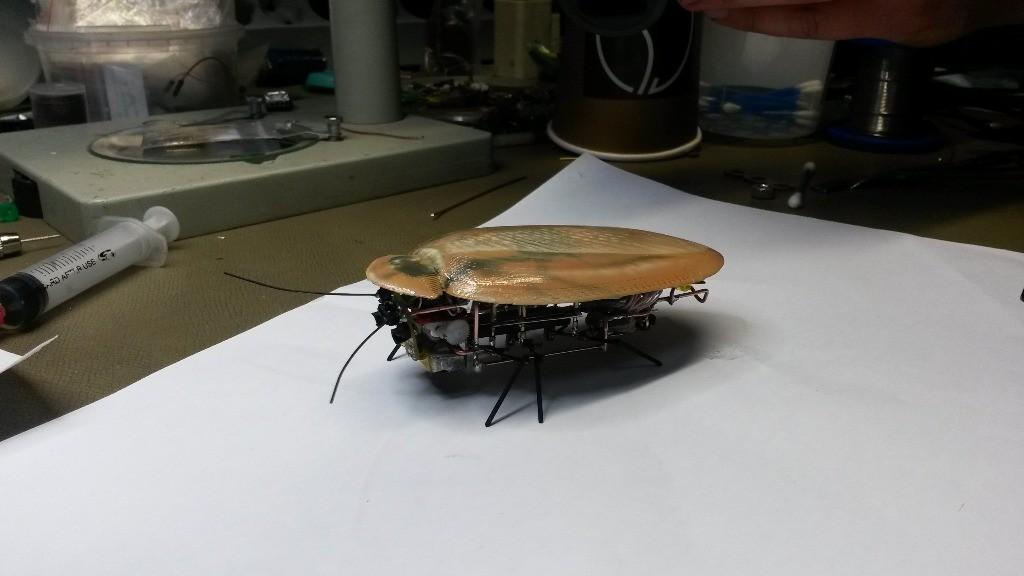 ロシア軍が敵の偵察・スパイ用に生産したゴキブリ・ロボット?