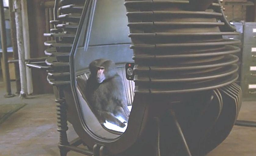 猿を使ったテレポート実験