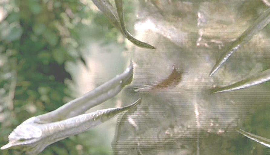 エイリアンが鋭い蜘蛛の脚のような物体に捕獲される