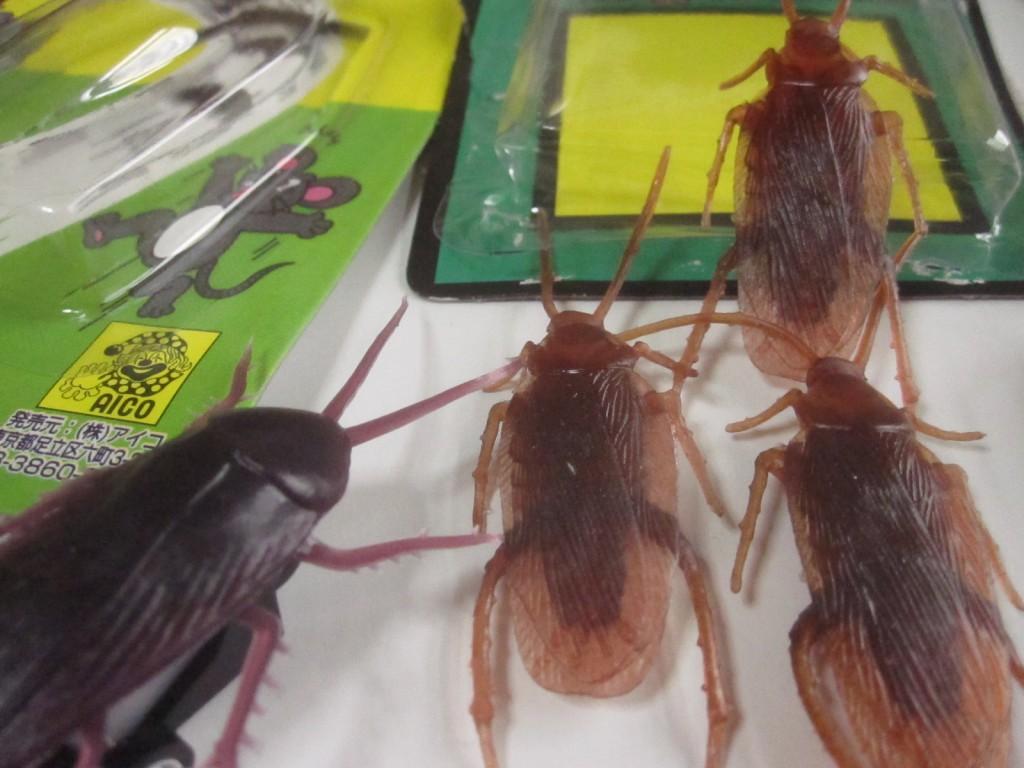 イタズラ人形をセットしてゴキブリが大群で進撃する様子を再現