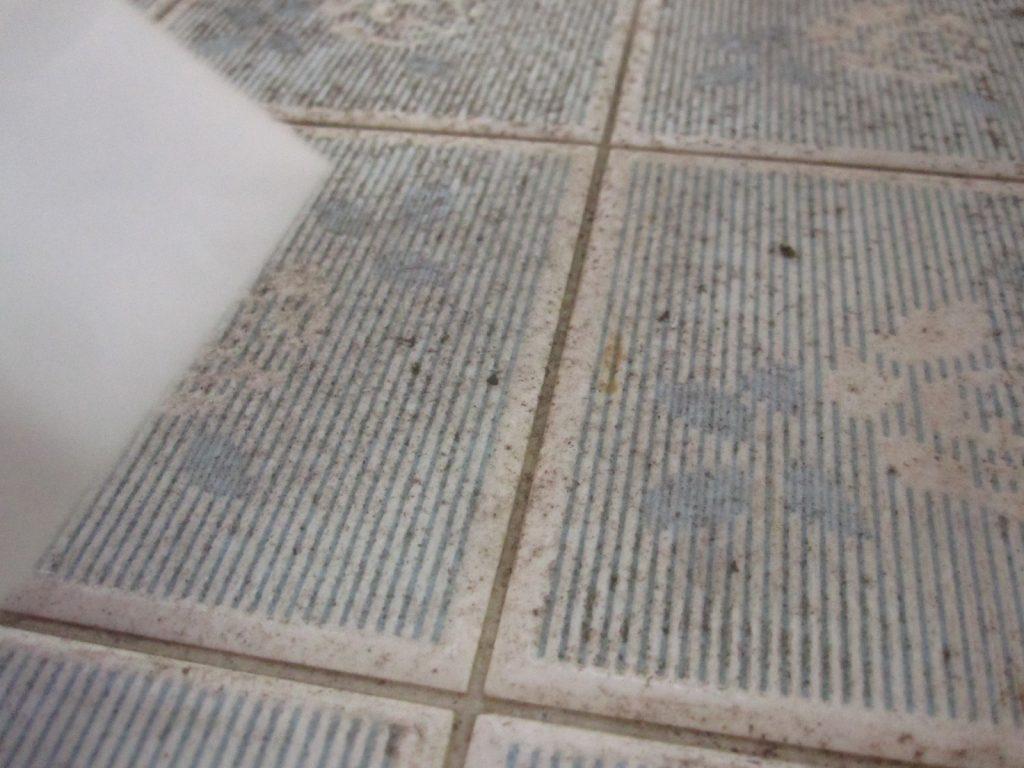 カビで汚れたタイルを激落ちポイポイで磨く瞬間の様子