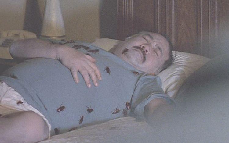 ベッドの上で息絶える男性の体には、たくさんのゴキブリが這い回っていた