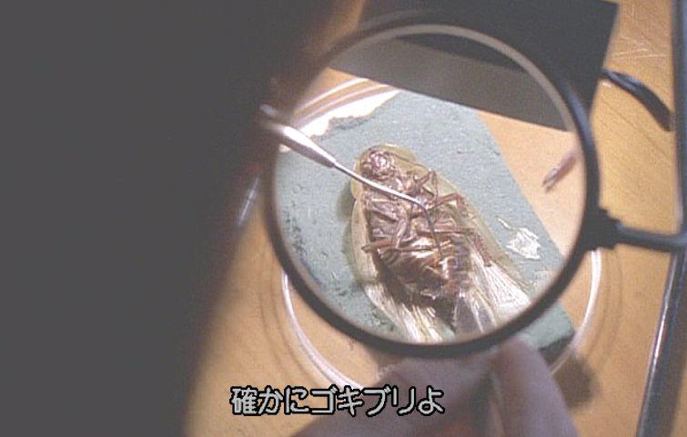 農務省の研究員ドクター・ベレンバウム(通称バンビ)がゴキブリを解剖する