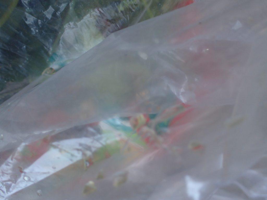 ゴミ袋にかけられた野良猫(地域猫)のオシッコ(小便)