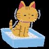 猫のおしっこが部屋の中に充満する事件が発生!ノラネコの糞尿被害で猫や飼い主まで嫌われるかもしれないぞ!?