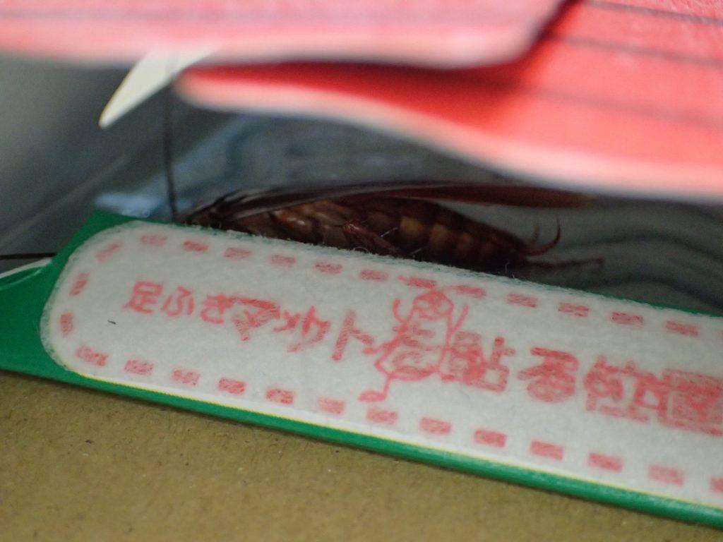 足ふきマットを乗り越えて粘着デコボコシートの罠に掛かったゴキブリの図