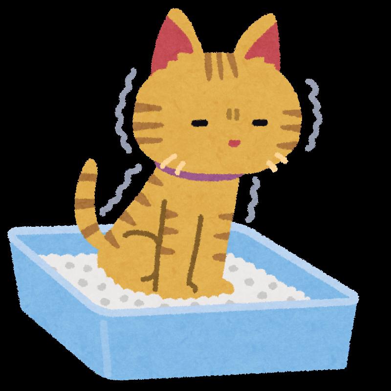 猫が排泄をしているイラスト