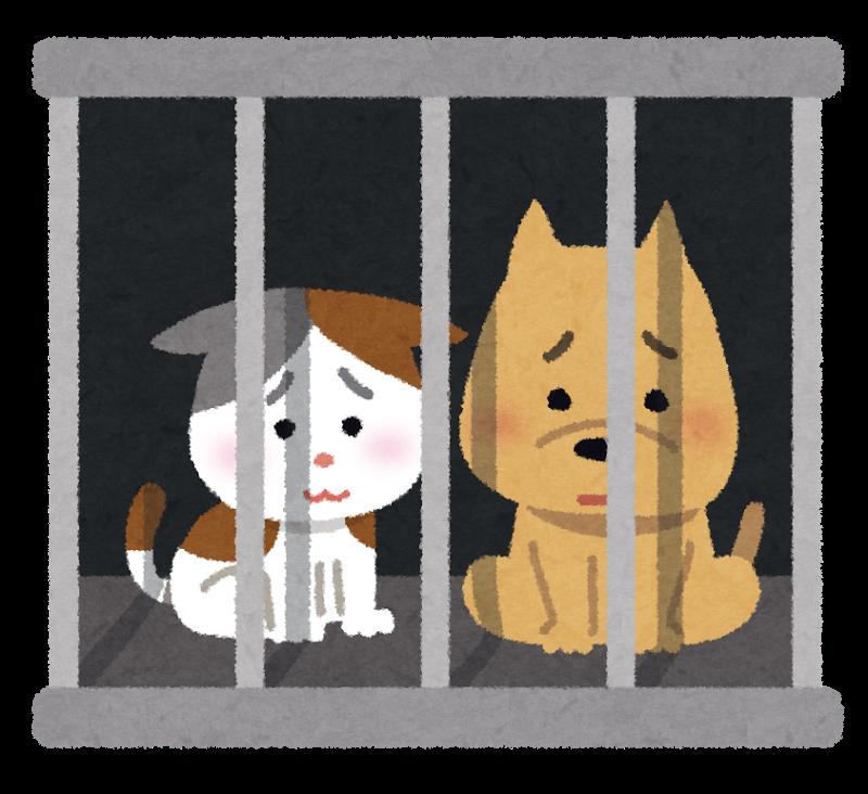 保健所に捕獲されて檻に入れられた猫と犬のイラスト