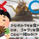 """[悲報?]アシダカグモを食べないで!バラエティ番組の企画でゴキブリの天敵、""""軍曹""""を料理して食べるシーンに衝撃を受ける!"""