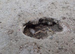 小さな穴が少しずつ深く広くなっている