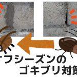 オフシーズンのゴキブリ対策|寒い秋冬の季節にできる害虫の隠れ家、住処、侵入経路を塞ぐ予防措置をやるなら今ですよ!