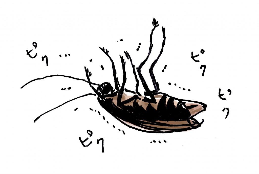 ひっくり返ってピクピク痙攣するゴキブリ