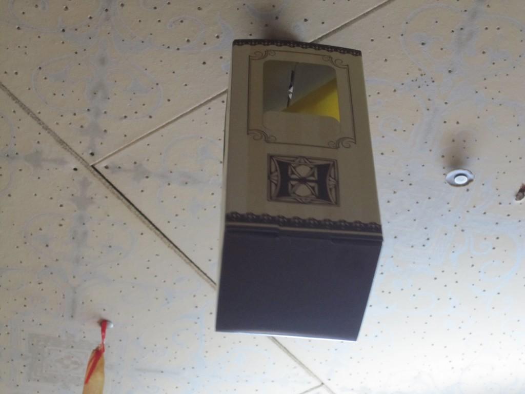 天井にブラ下げたムシとりボックス