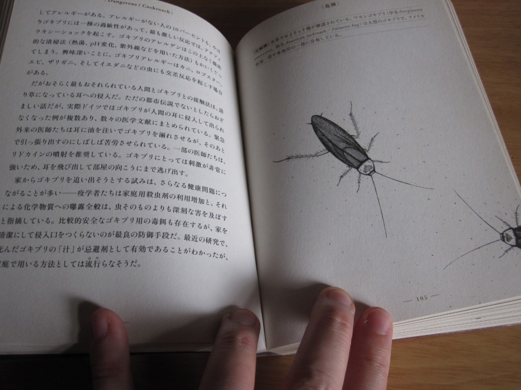 (危険)チャバネゴキブリのページを開く