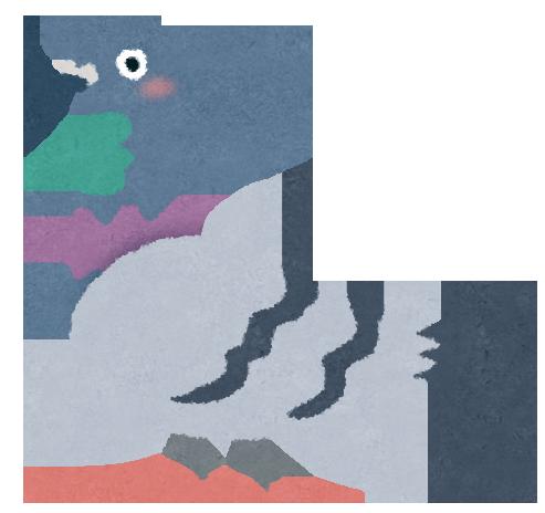 公園や都会などどこにでもいる灰色の鳩