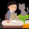 害獣 野良猫の糞尿に我慢も限界#`ェ´) 百円ショップDAISOの猫忌避剤(固形)を仕掛けて追い払え!