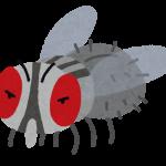 大喜利『害虫IPPON グランプリ』開催!題目は『ハエ 死んだふり』