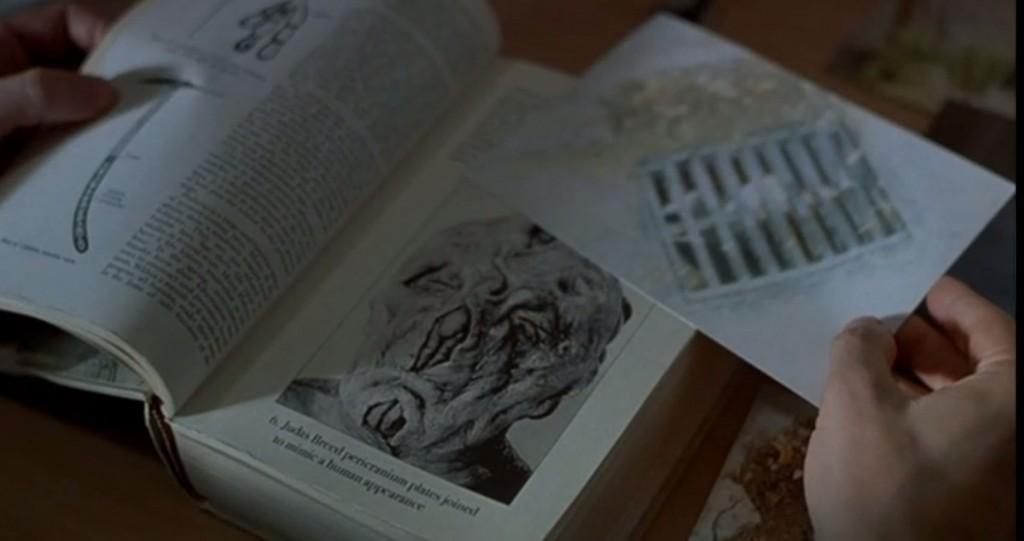 ユダの血統に関する資料と写真
