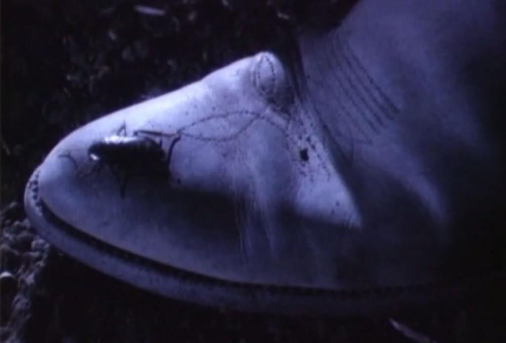 足元に逃げ切ったゴキブリ