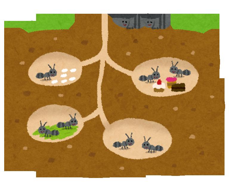 地面の中(地下)に作られたありの巣穴・住居