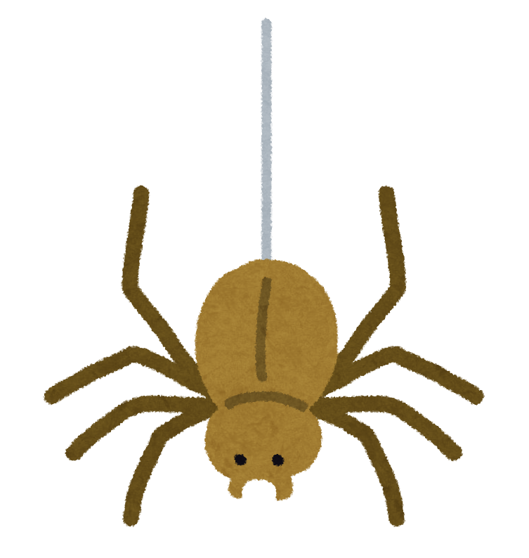 空中から糸で吊り降りるクモ