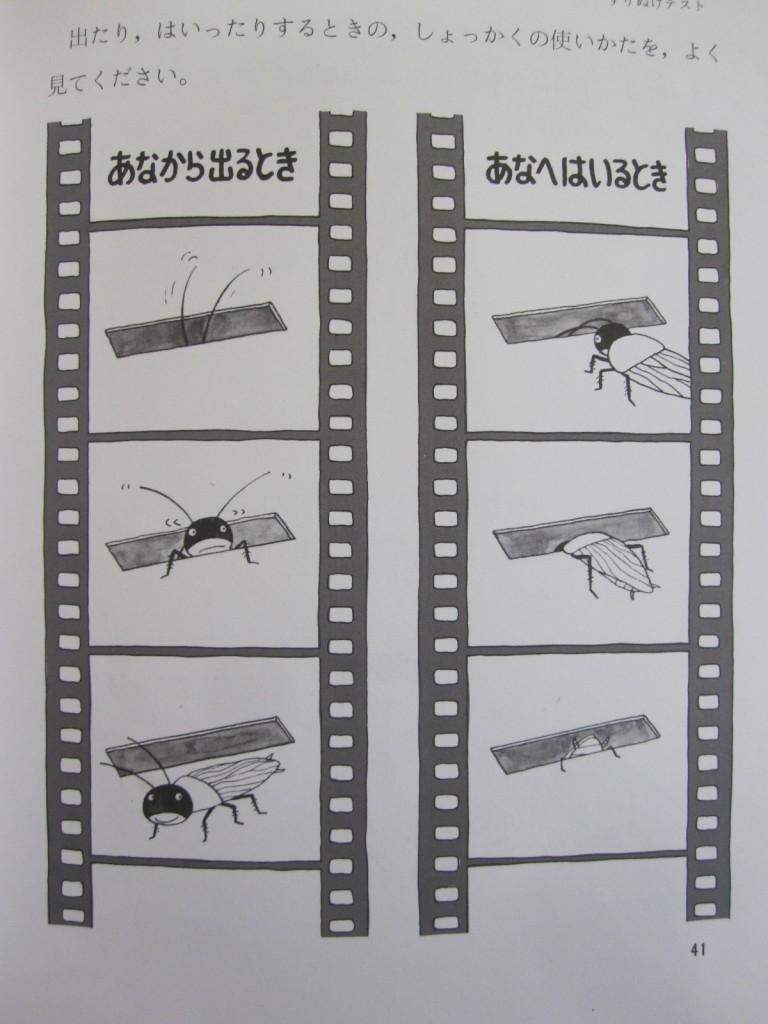 ゴキブリの触覚の使い方の実験テスト