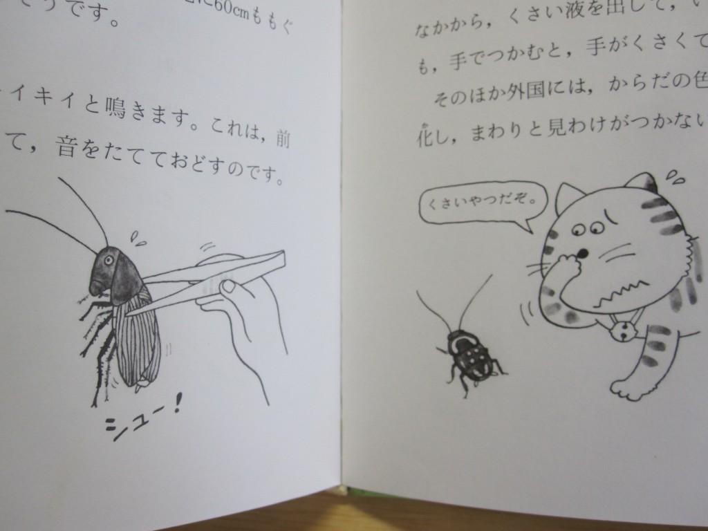 ゴキブリの身の守り方(防衛手段)