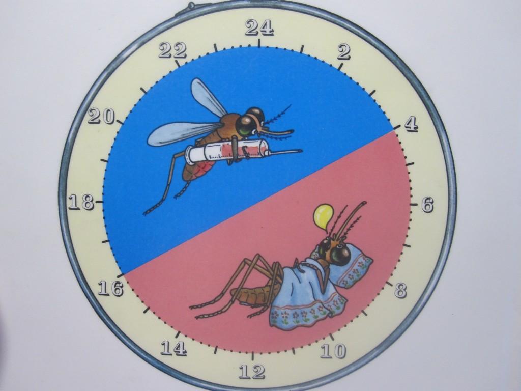 1日24時間の蚊の活動イメージ