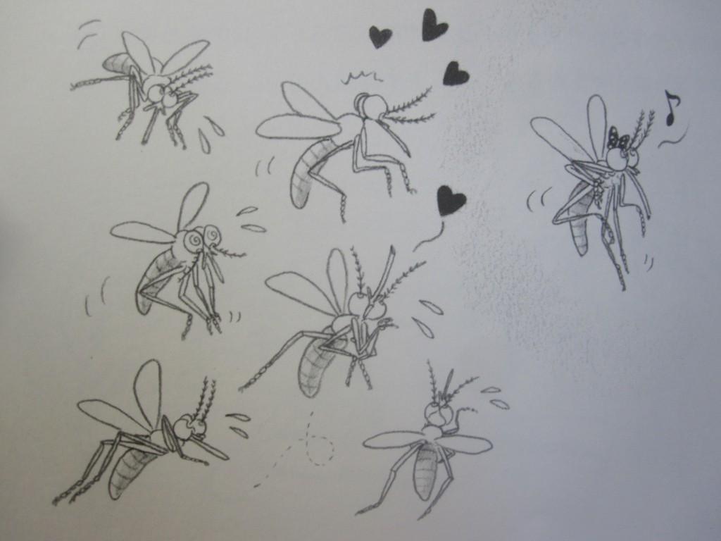 メスの蚊に求愛をするオスの蚊