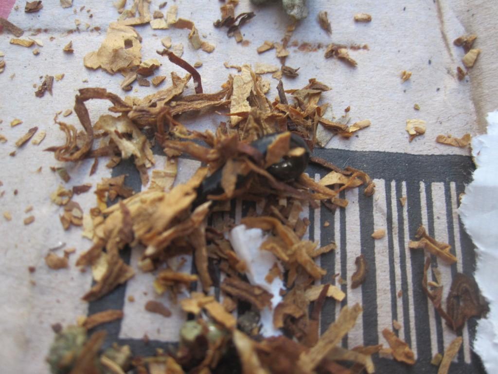 粘液を分泌して必死にタバコを振り落とす