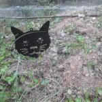 DAISO野良猫撃退グッズは泥棒・防犯にも役立つ!?