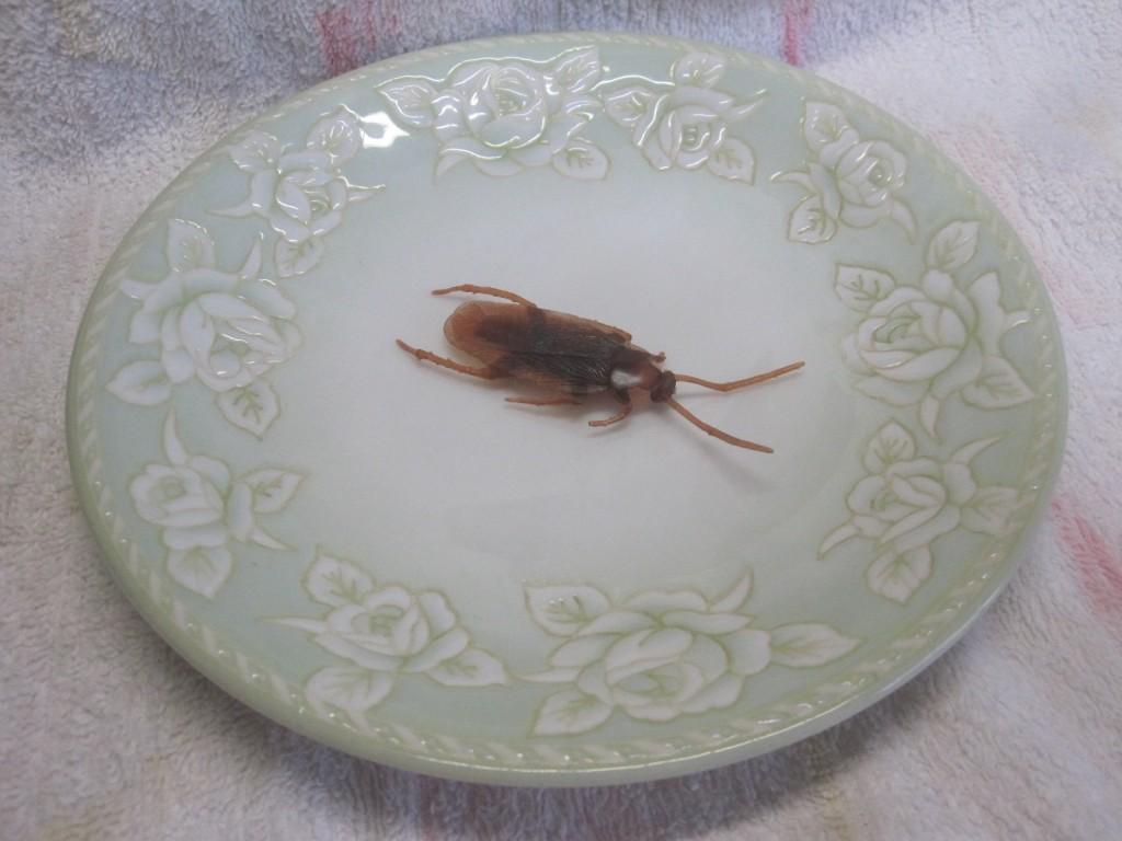 お皿に1つ載せてみた