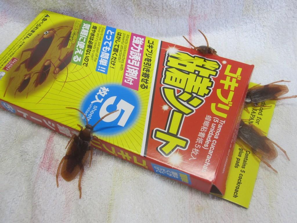 ゴキブリ粘着シートに群がる様子を再現