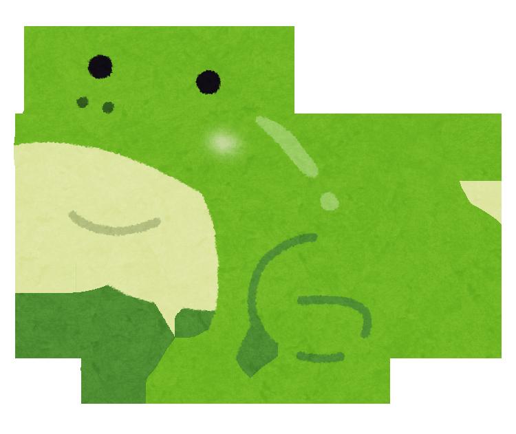 黒いオタマジャクシから緑色の幼体に成長したカエル