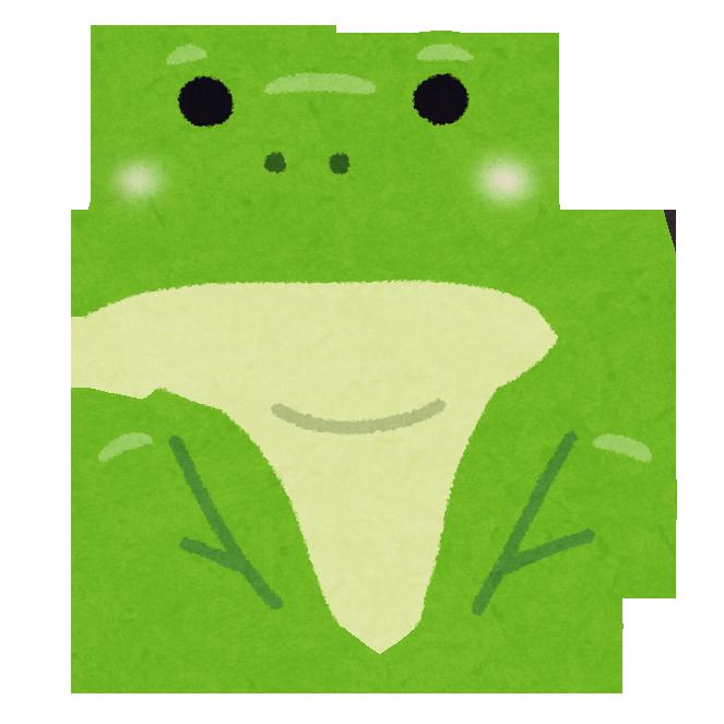 尻尾がなくなり完全体の成体に成長したカエル