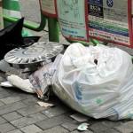 生ゴミ袋の出し方を変えるだけで野良猫とゴキブリが減らせる!?と思う理由