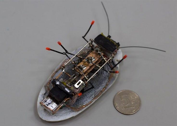 ロシア産のロボットゴキブリのお腹部分