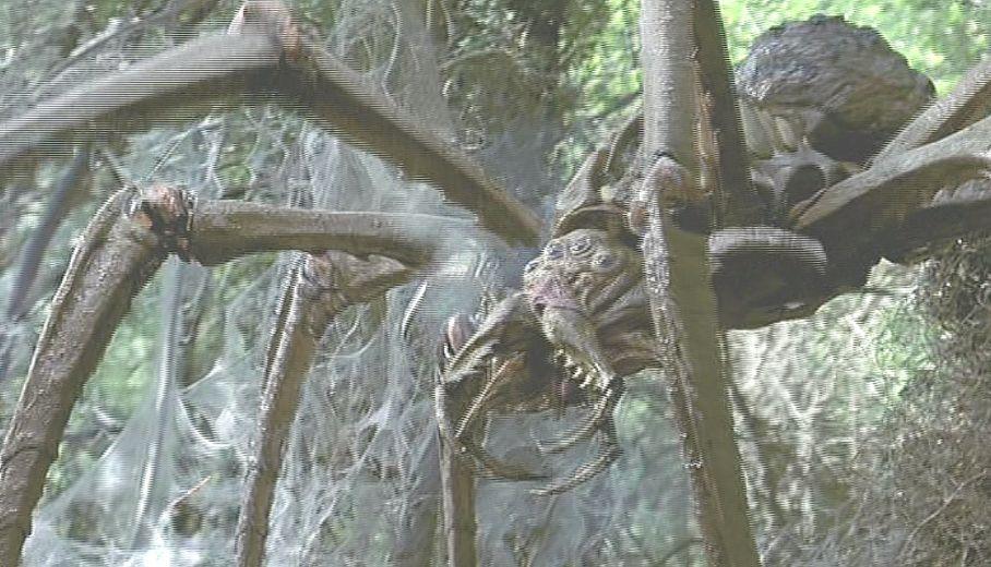 しかし!銃弾を弾き返す鎧に覆われた巨大蜘蛛はビクともしない!