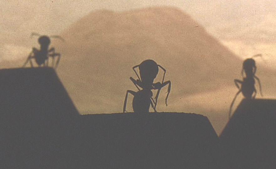 最後に生き残ったのは人類か蟻(アリ)のどちらなのか・・・