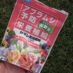 花を守れ!白い悪魔ミカンコナカイガラムシをフマキラーのカダン殺虫肥料で駆除できるか試してみるぞ!