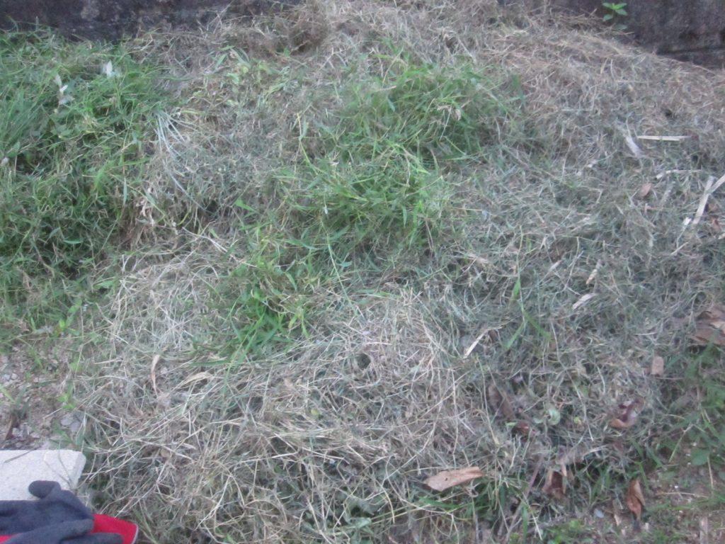刈り終えて積み上げた雑草が枯れ草に変色した山