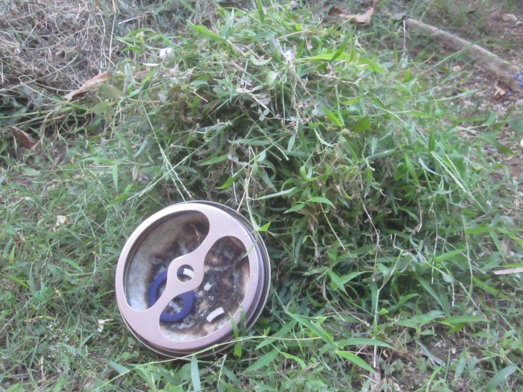 蚊取り線香の皿と一緒に撮影して高さ比較にする