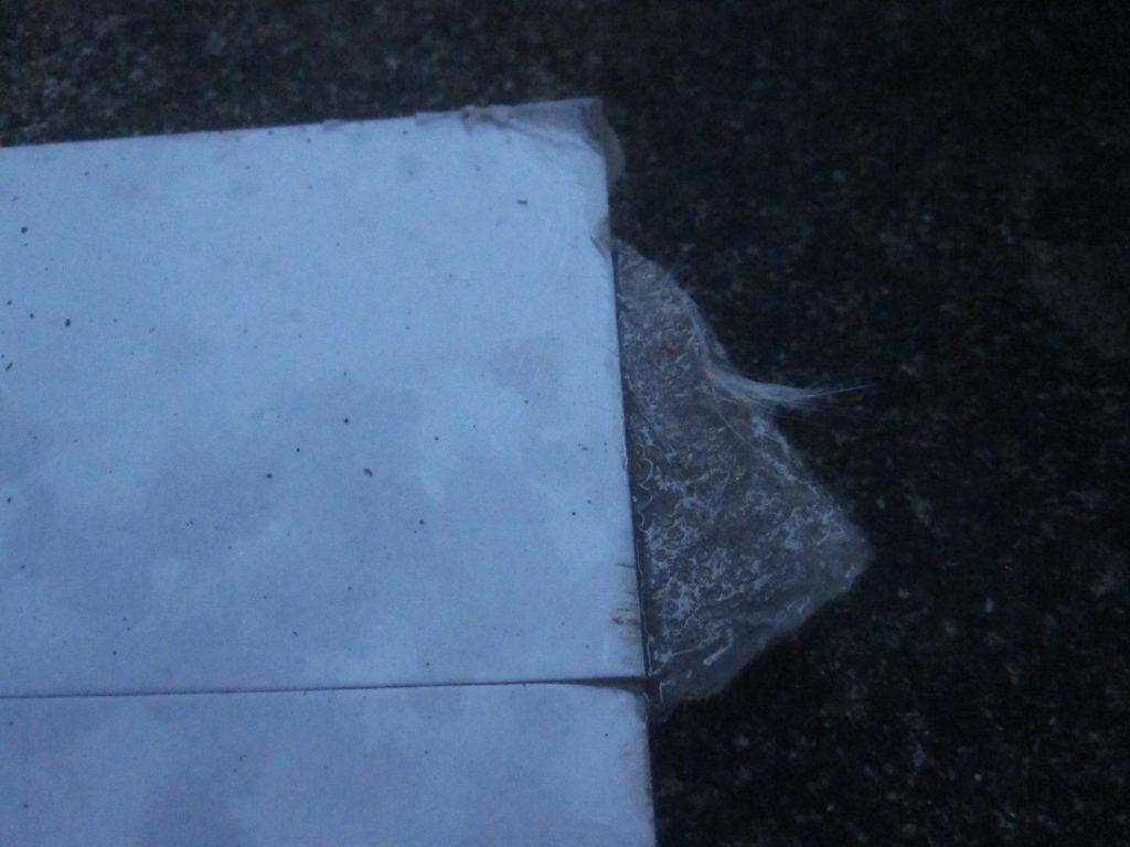 昨夜に仕掛けた場所から10数メートルも離れた場所で、折りたたまれた状態で粘着シートを発見・・・